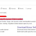 Jasa Google Ads Untuk Meningkatkan Pemasukan Penjualan Sprei